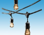 Edison String Lighting Rentals